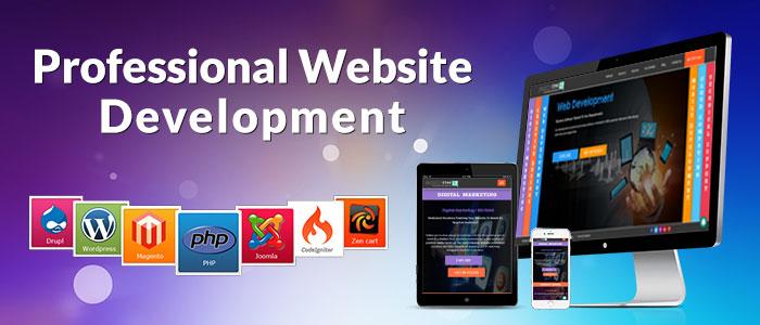 web development company<